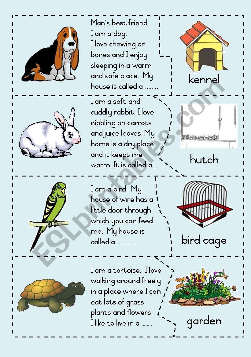 Pets and their homes - Puzzle worksheet