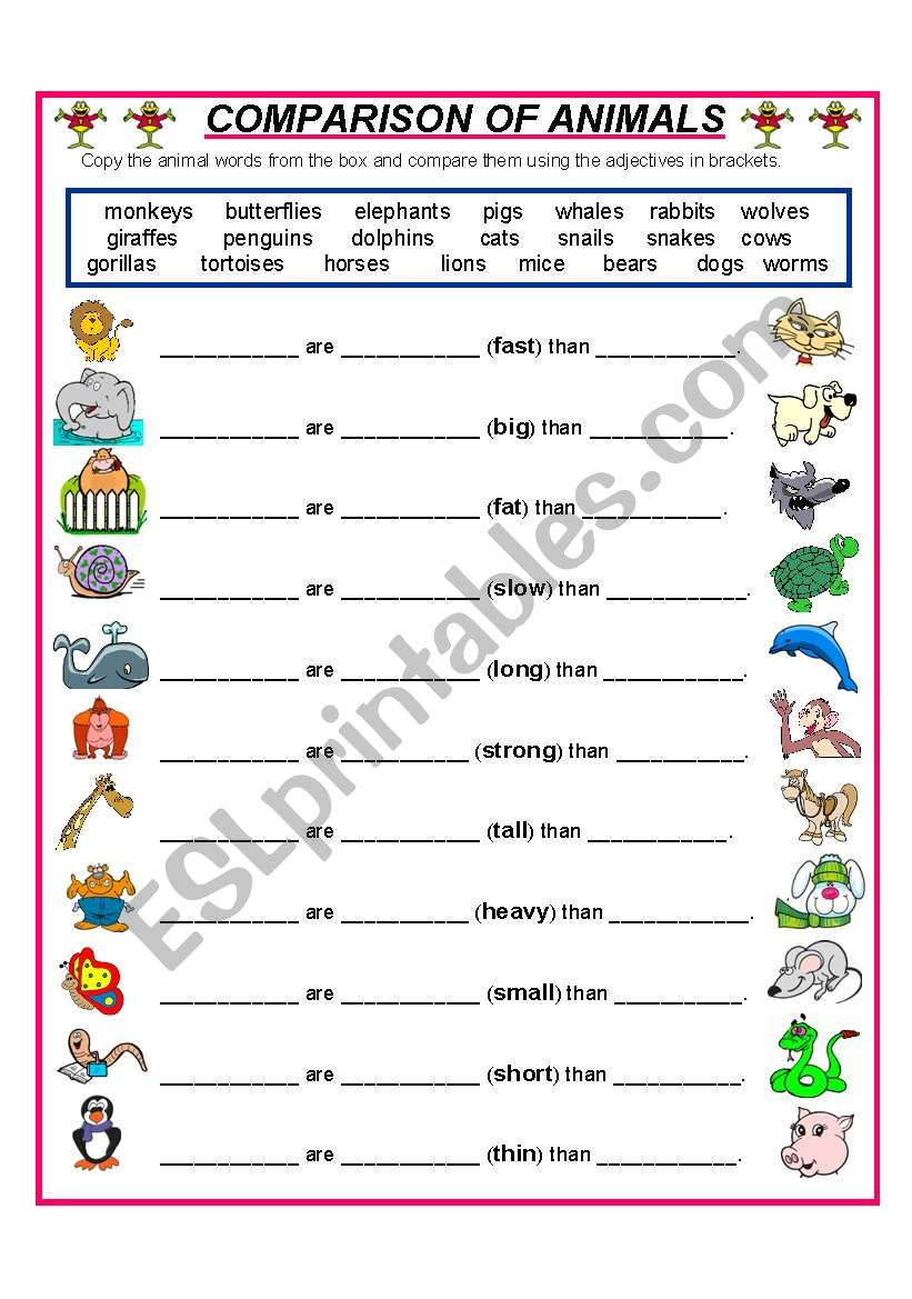 COMPARE THESE ANIMALS worksheet