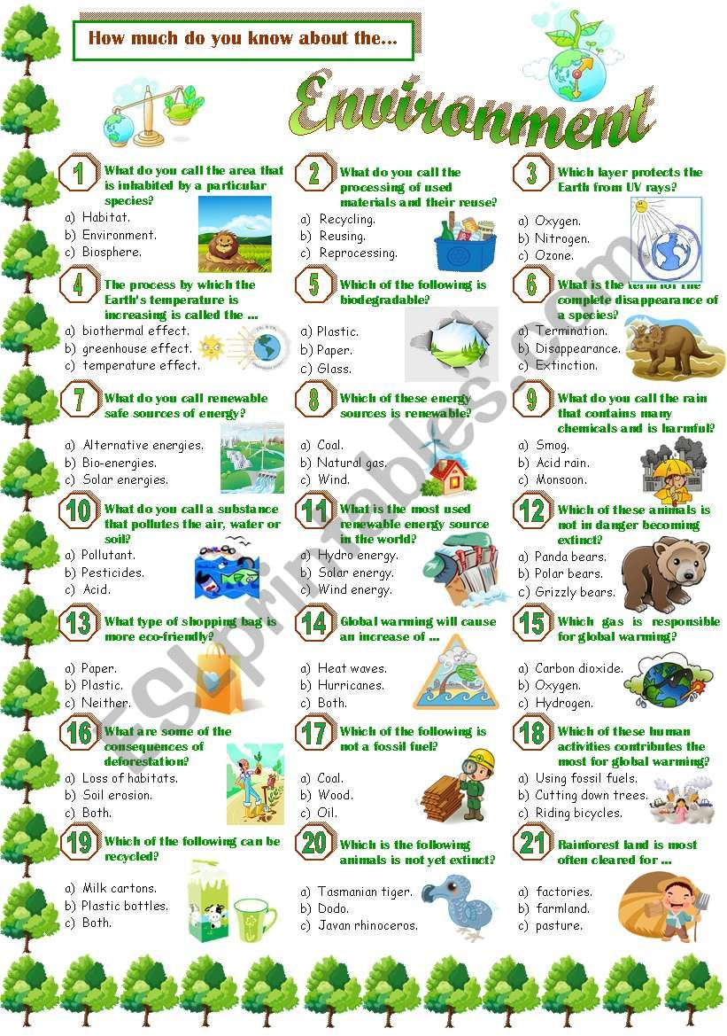 Environment-Quiz worksheet