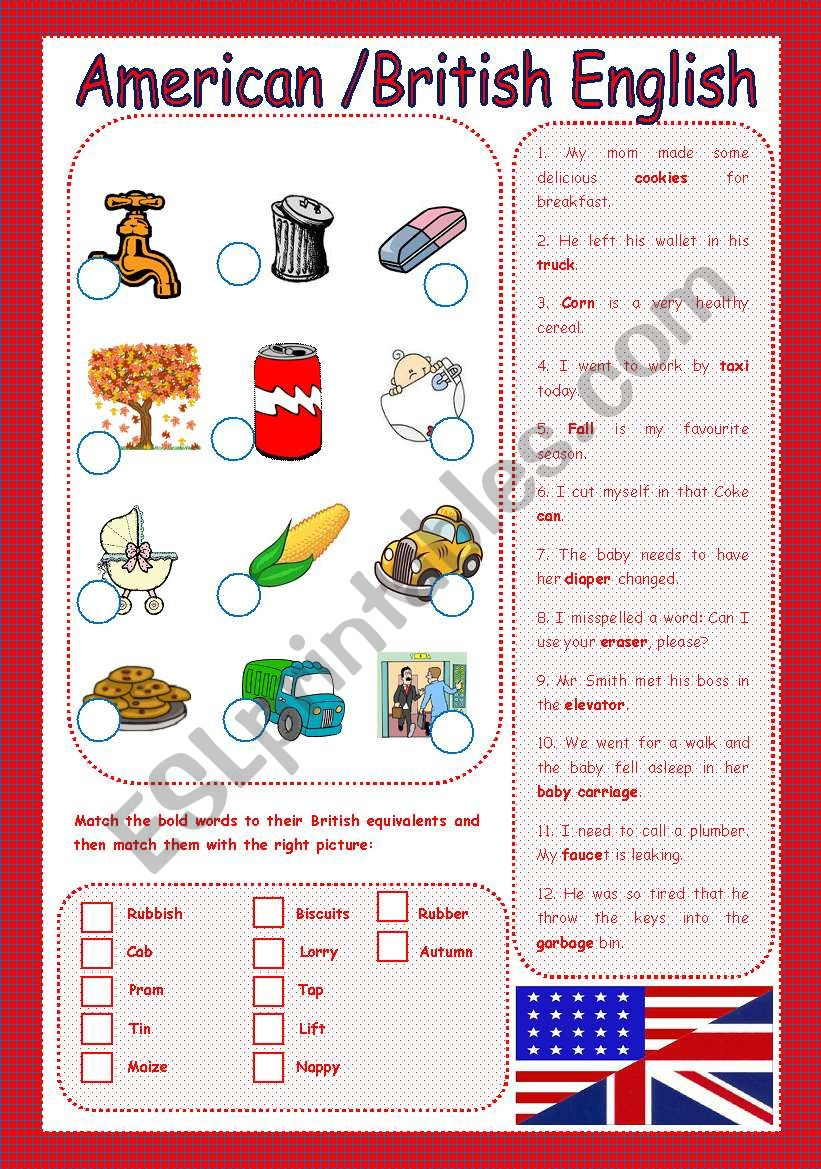 American Vs British English - ESL worksheet by Carla74