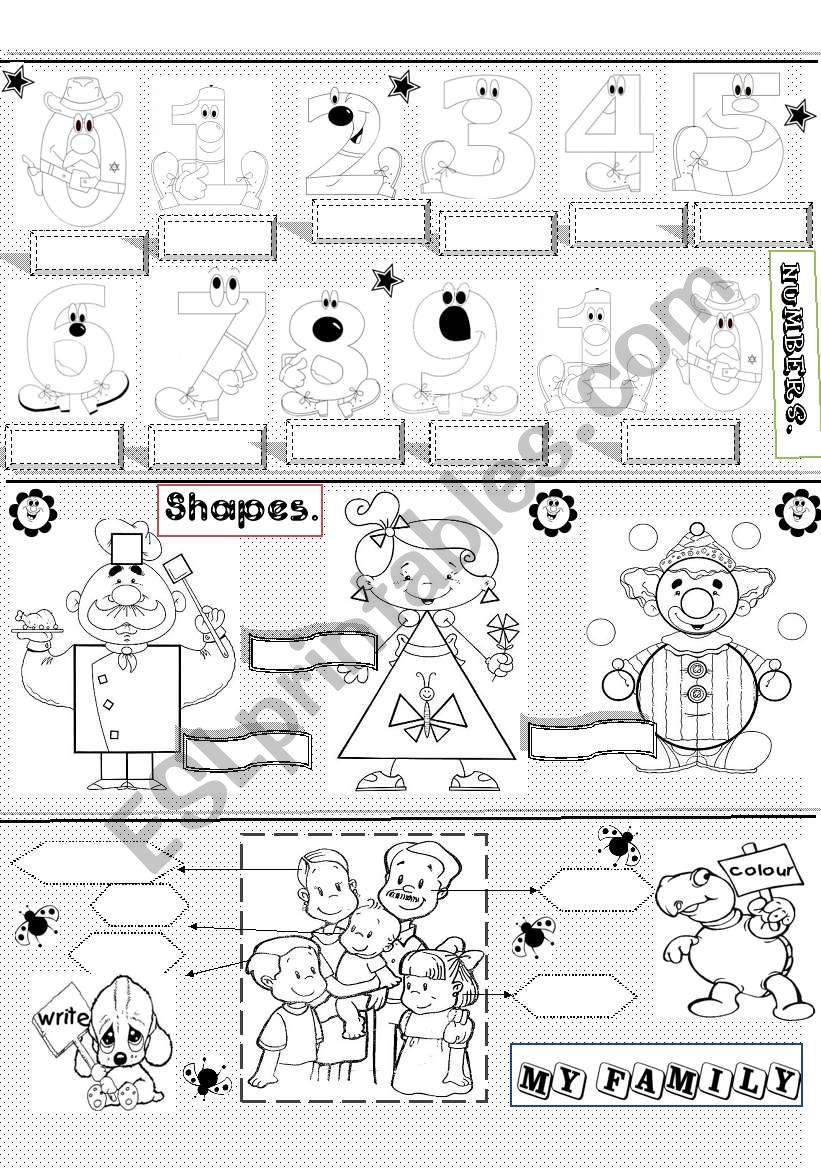numbers,shapes and family worksheet