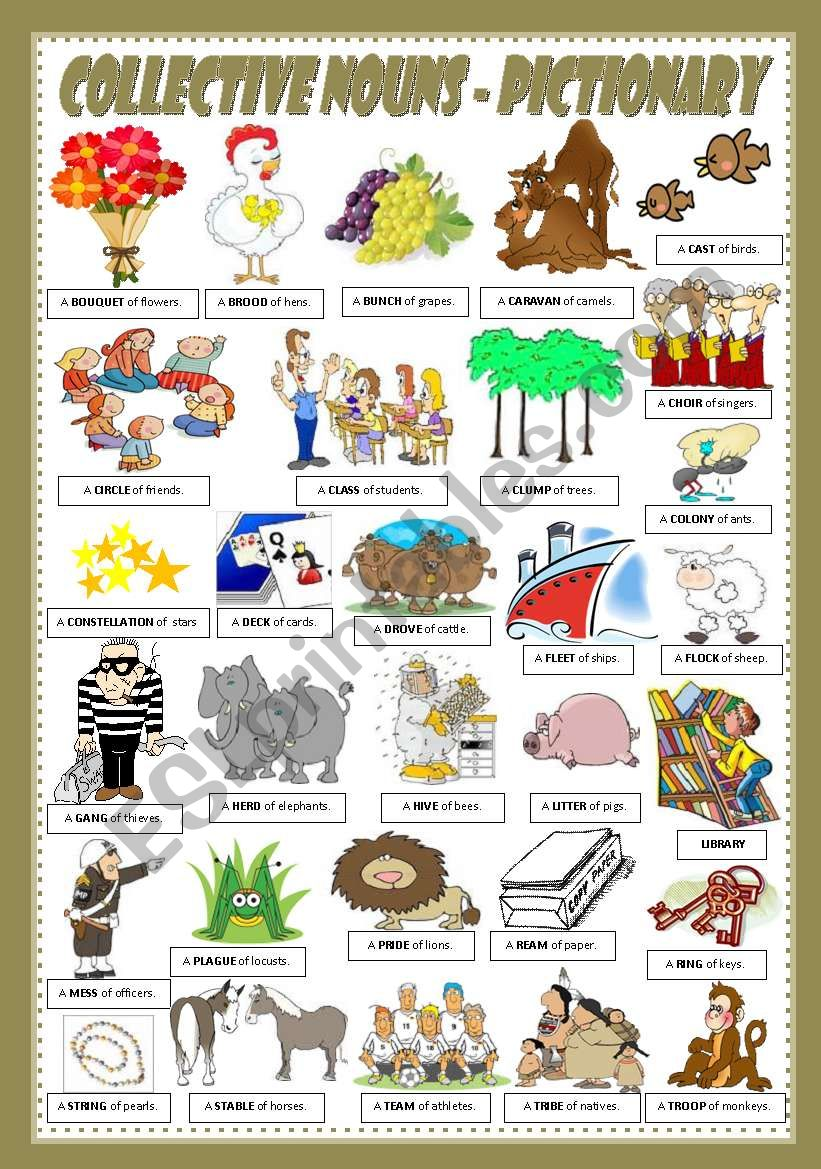 COLLECTIVE NOUNS - PICTIONARY worksheet