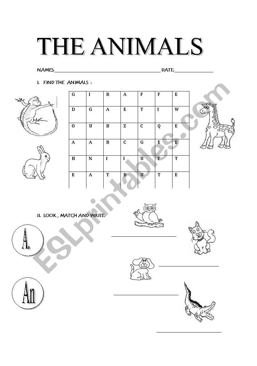 learning the animals  worksheet