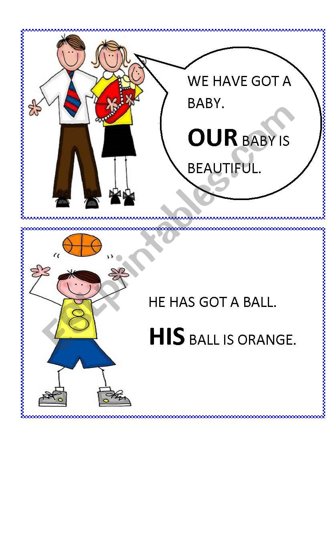 possessive adjectives flashcards 2