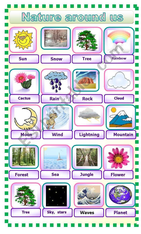 Nature around us.Pictionary. worksheet