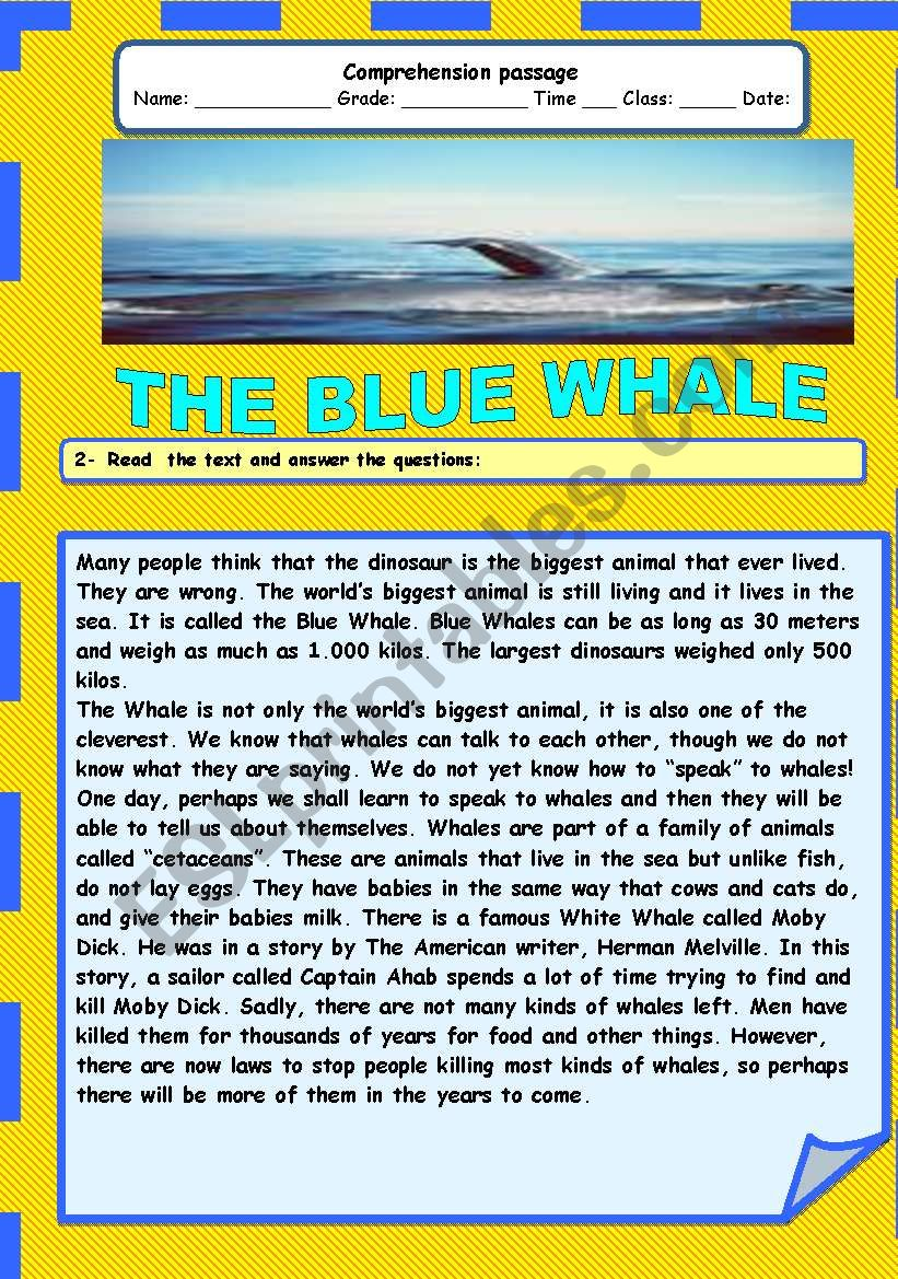 The blue whale worksheet