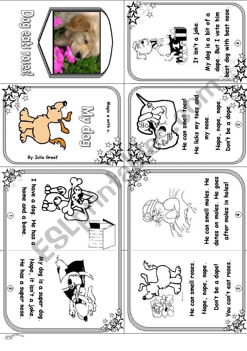 Phonics Mini Book 5: Magic E with O: My Dog
