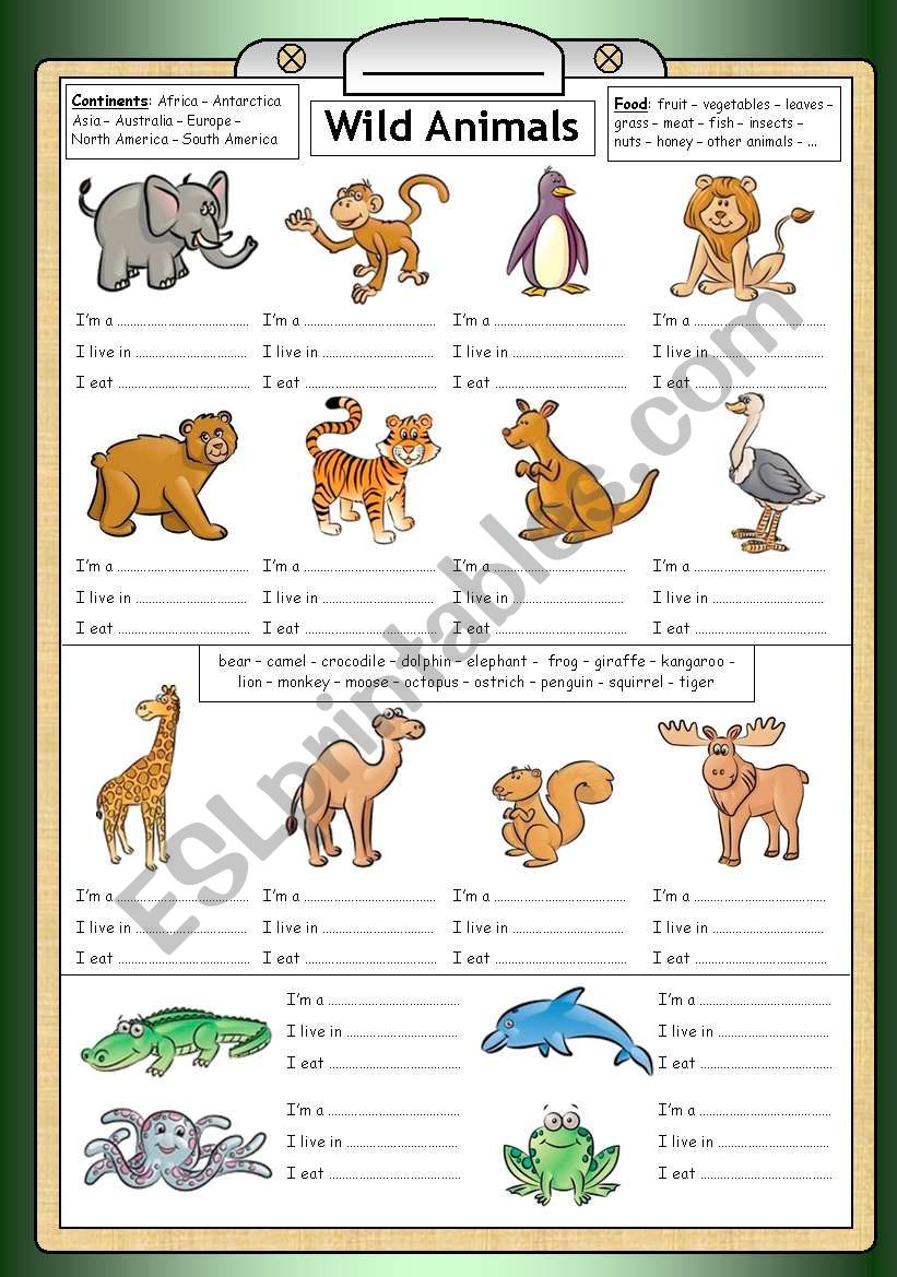 Wild Animals - Reading, writing & general knowledge