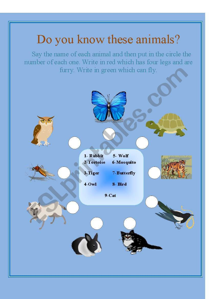Do you know these animals? worksheet