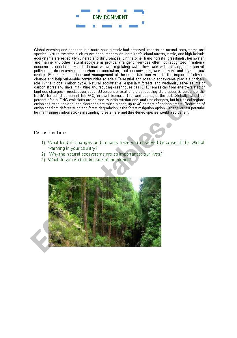 Environment Discussion worksheet