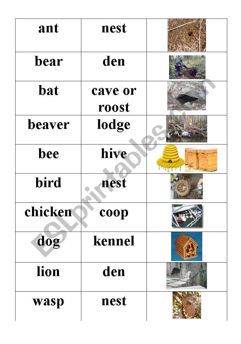 Original as well Number also Kindergartenworksheets Mrmen furthermore Original in addition Animal Homes. on 8 free printable number worksheets