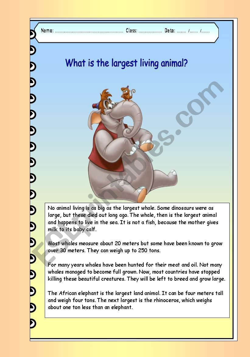 What is the largest living animal (color)