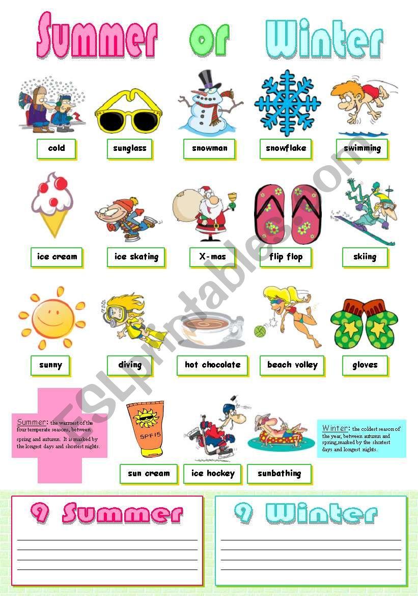 Summer or Winter  worksheet