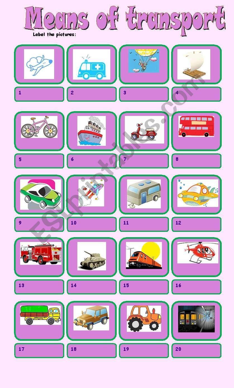 means of transport worksheet