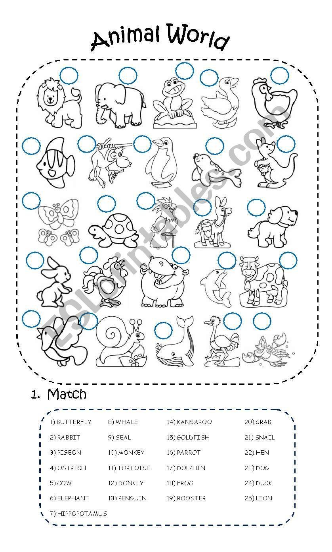 Animal World (2 PAGES) - ESL worksheet by jeriquel