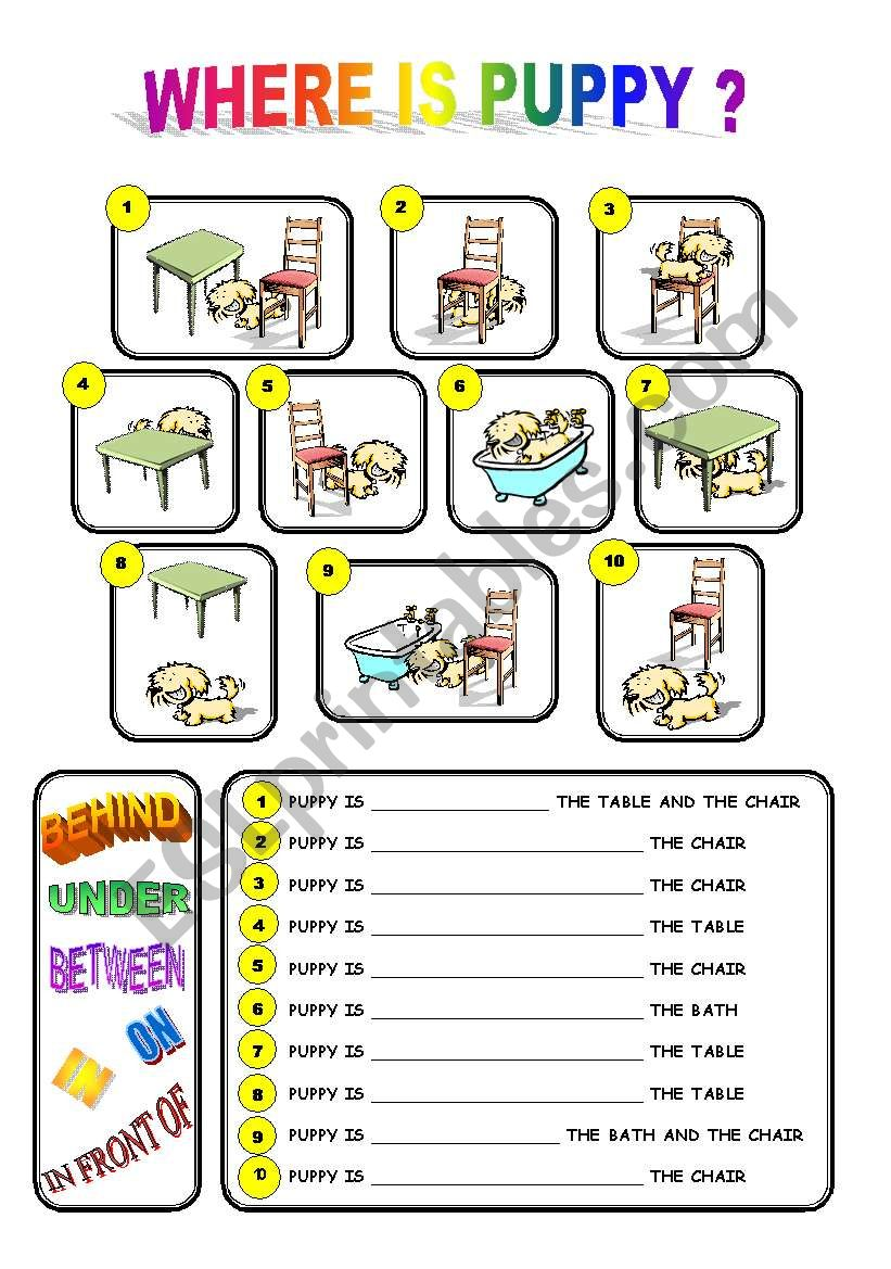 WHERE IS PUPPY? PREPOSITIONS OF PLACE