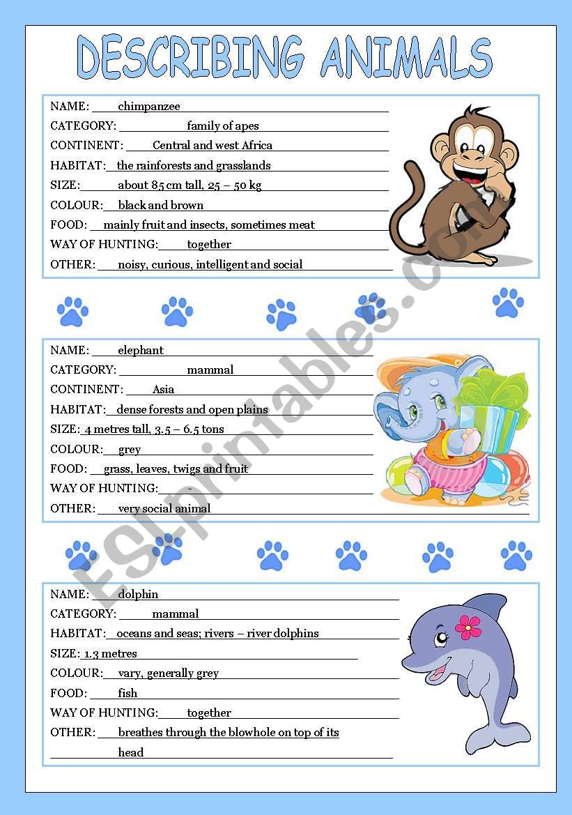 describing animals 1/3 worksheet