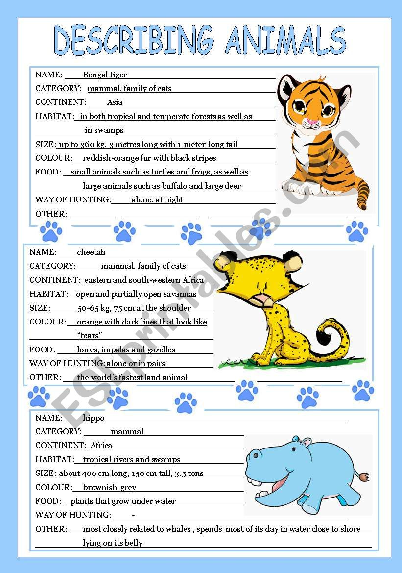 describing animals 2/3 worksheet