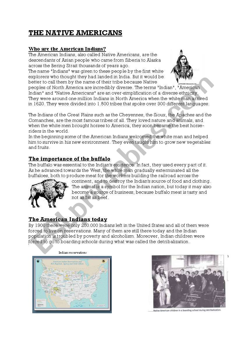 The Native Americans worksheet