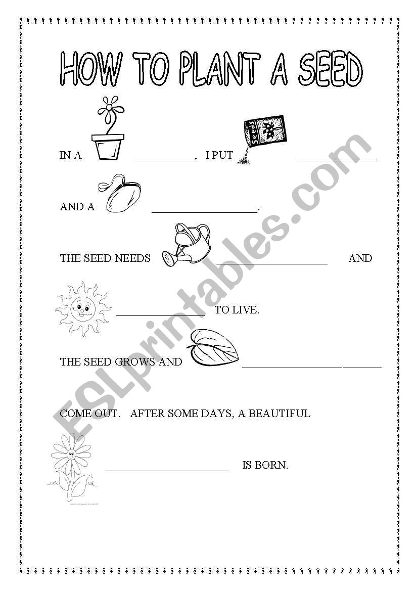 How To Plant A Seed Life Cycle Of Esl Worksheet
