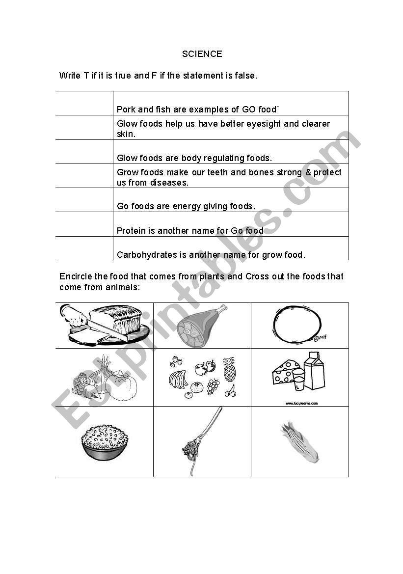 English worksheets: Pre School science worksheet grow glow go foods