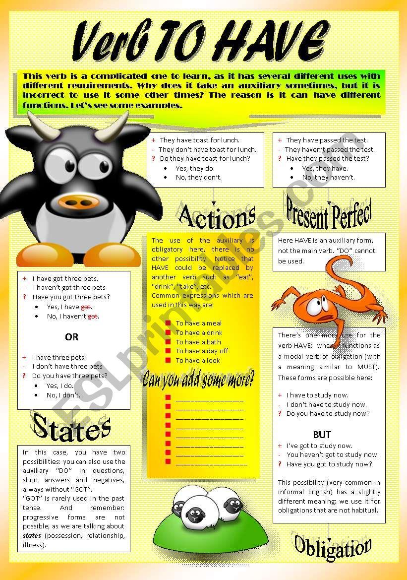 Verb TO HAVE worksheet