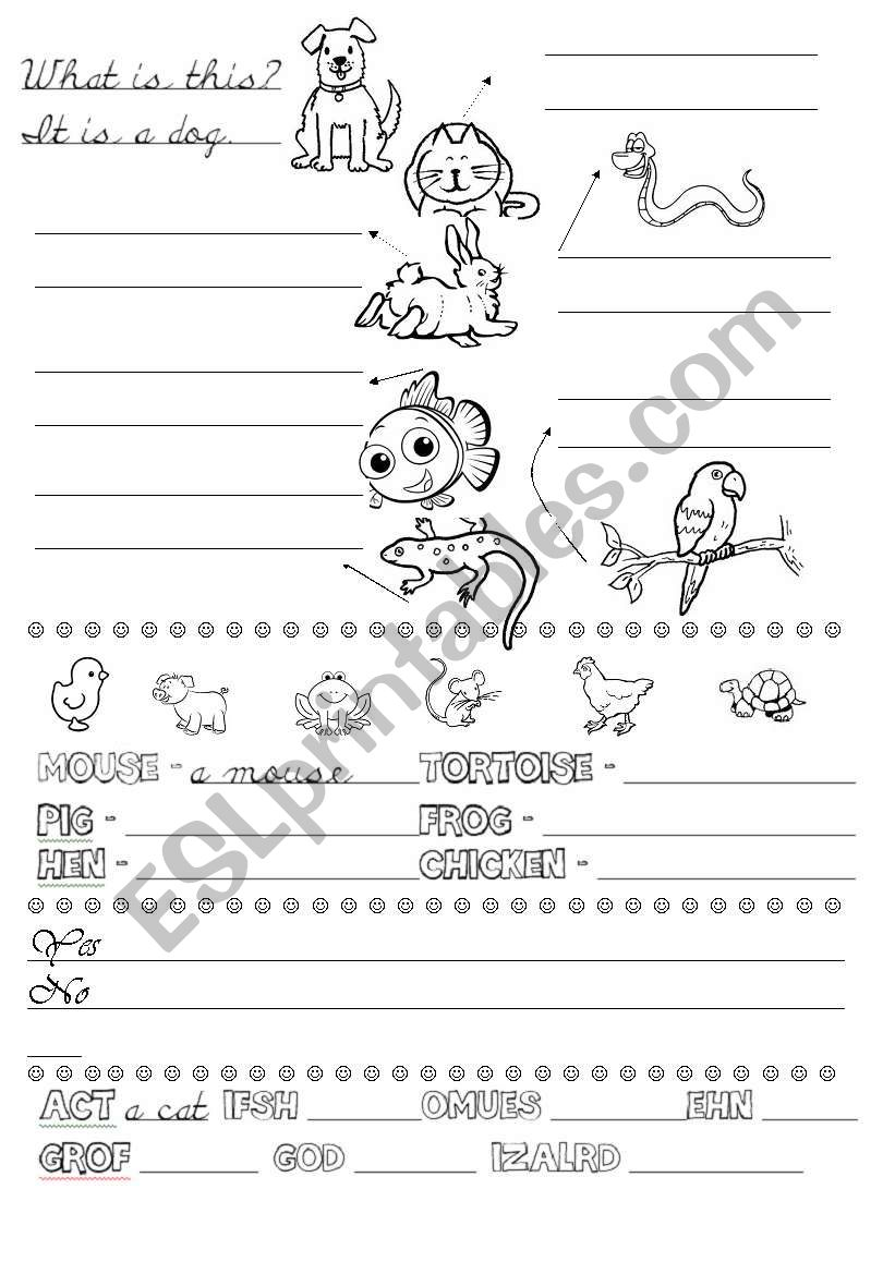 What is this? worksheet