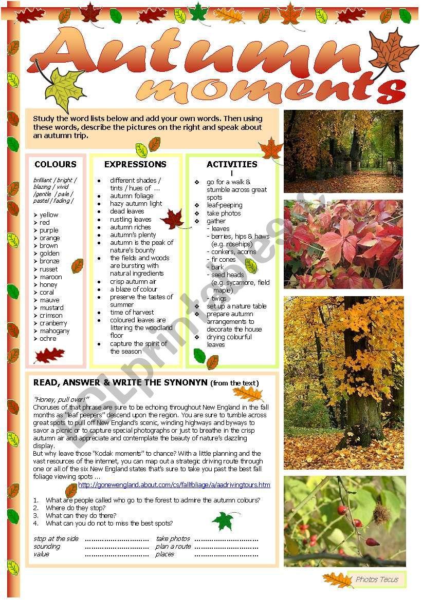 Autumn moments worksheet