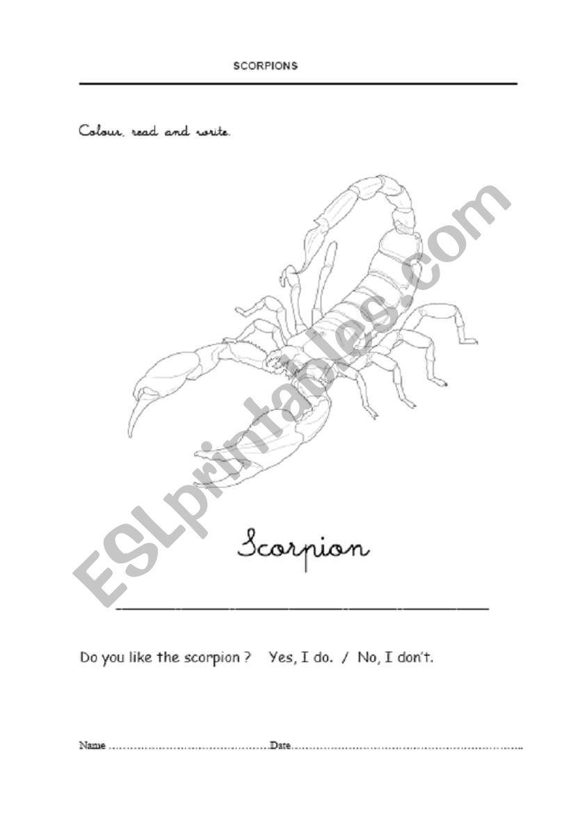 Scorpions 1 worksheet