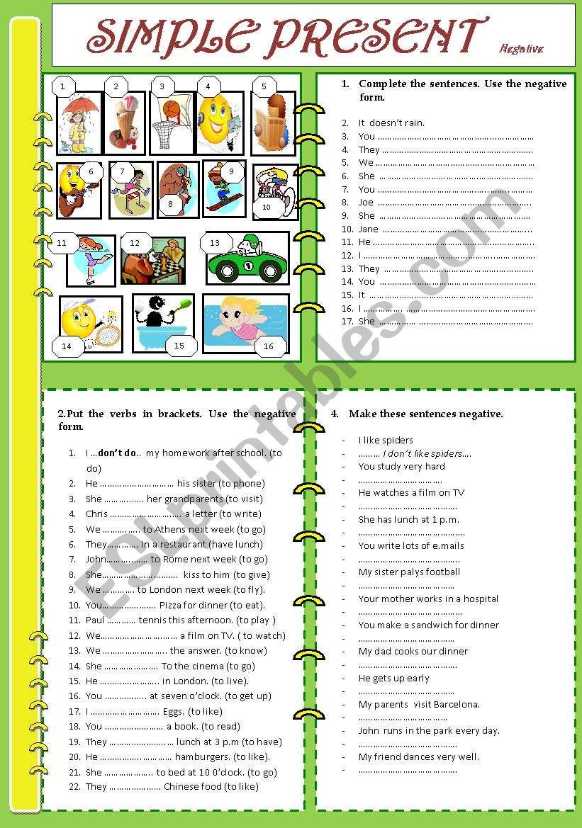 simple present, negative worksheet