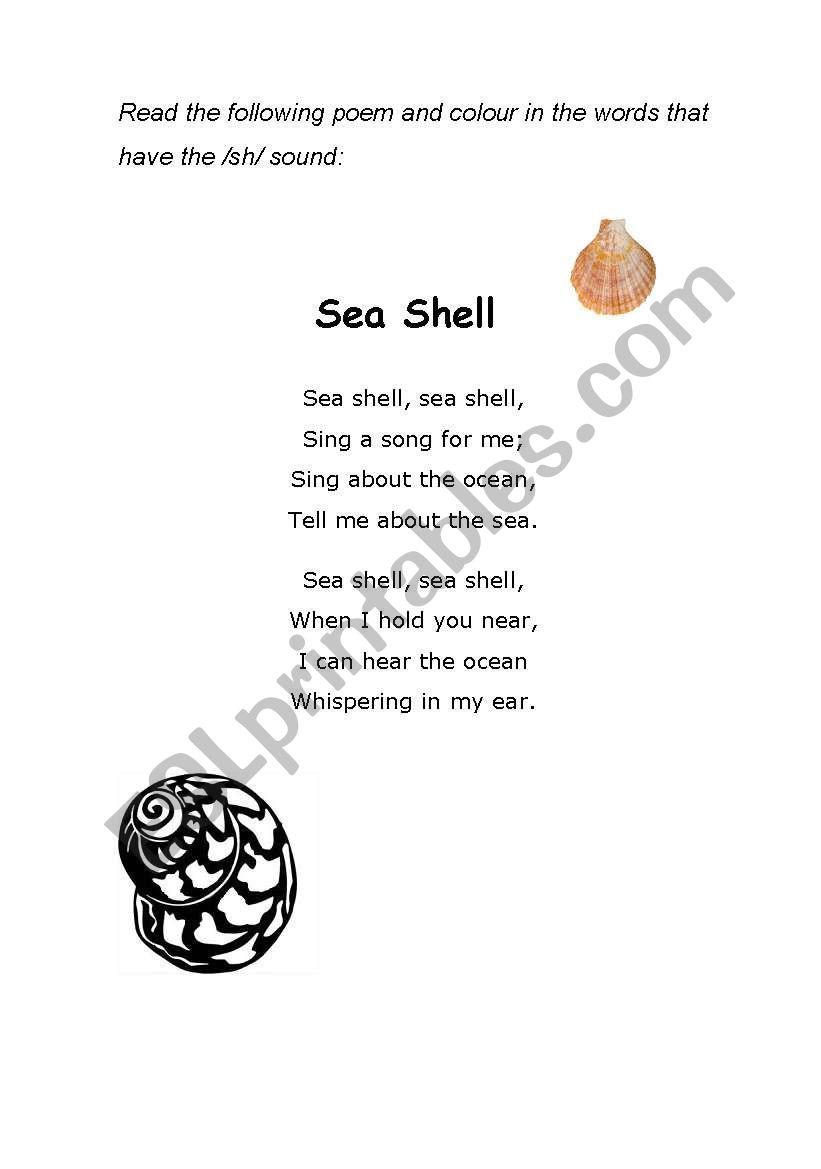 Sea Shell Poem -