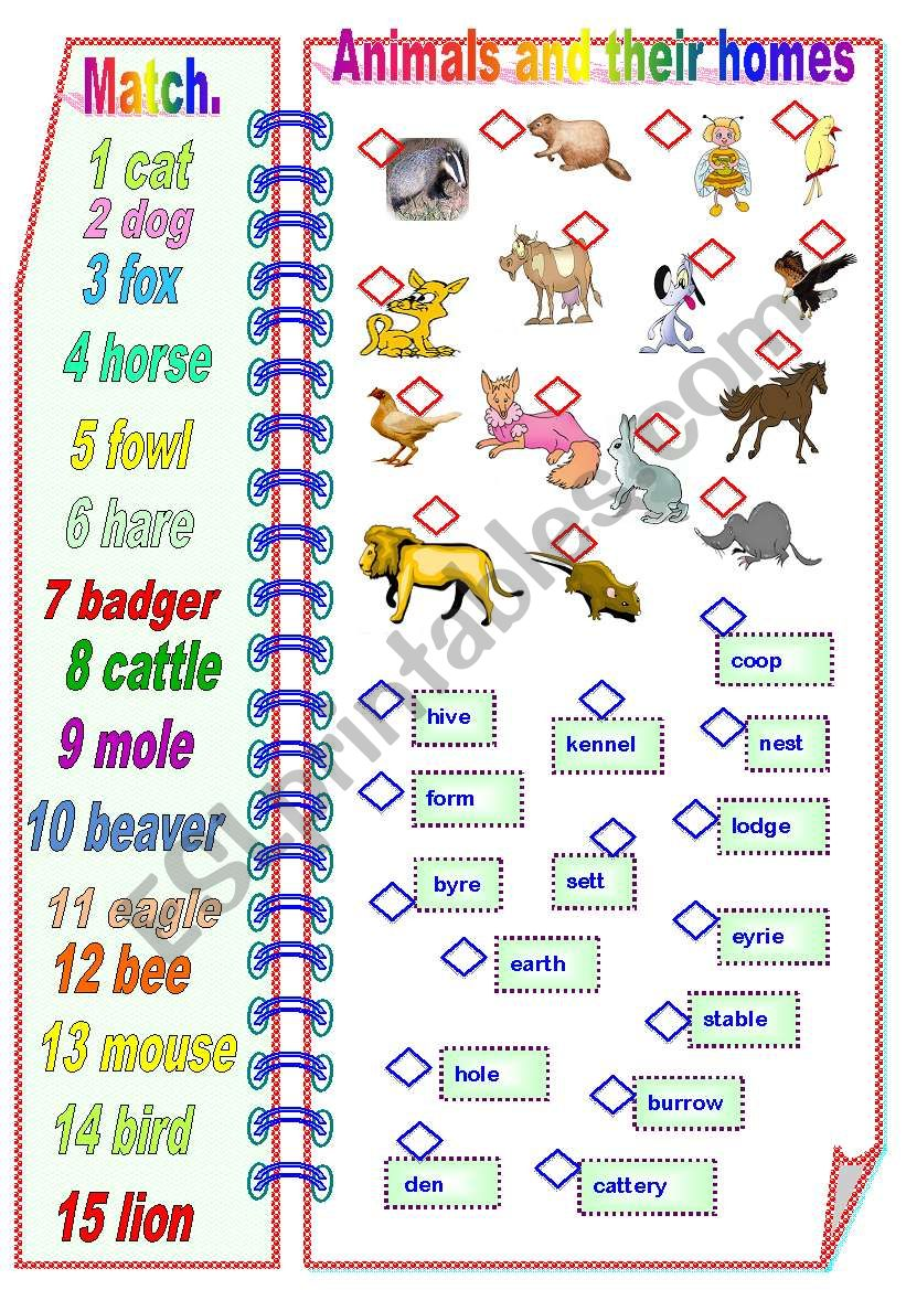 worksheet Animals And Their Homes Pictures Worksheets english worksheets animals and their homes part 1 of 2 fully editable