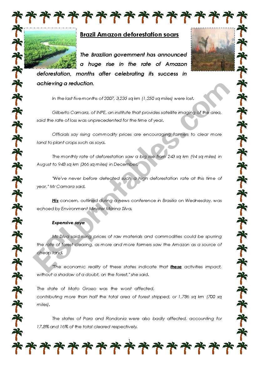 AMAZONIA DEFORESTATION - ENVIRONMENT