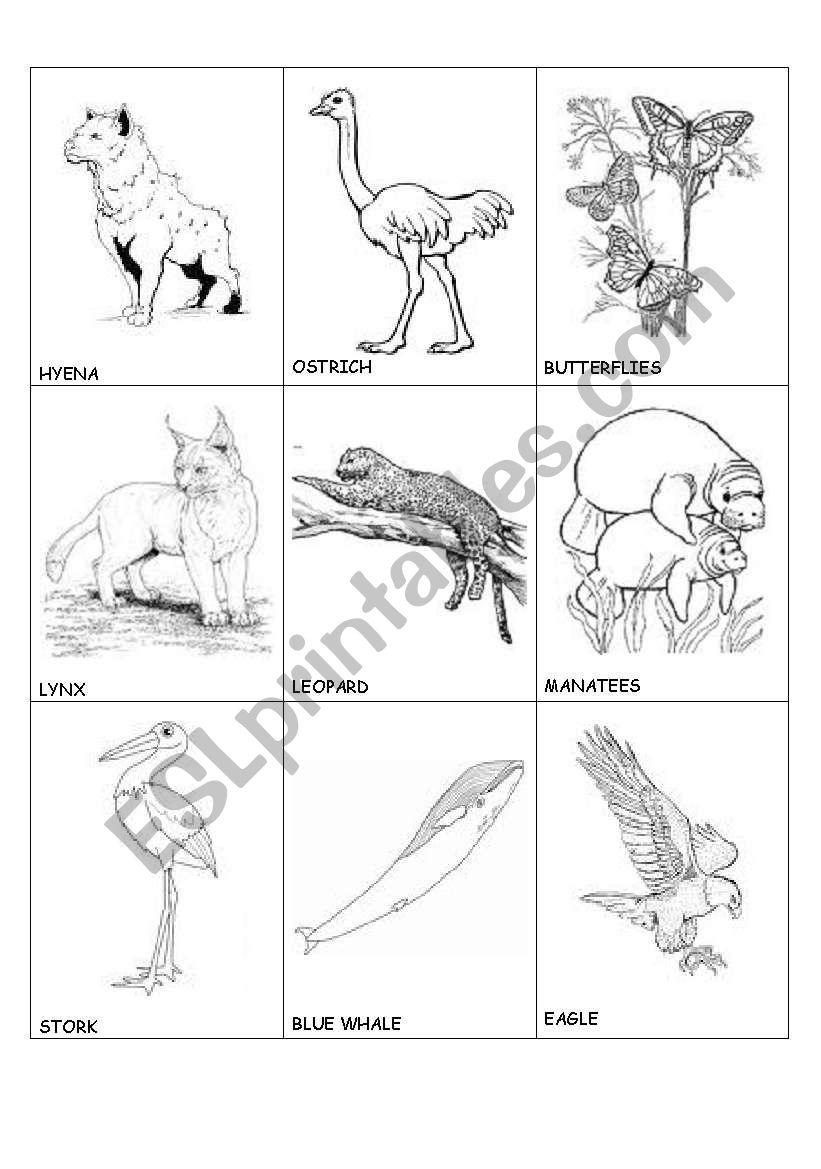 animals in danger(1) worksheet