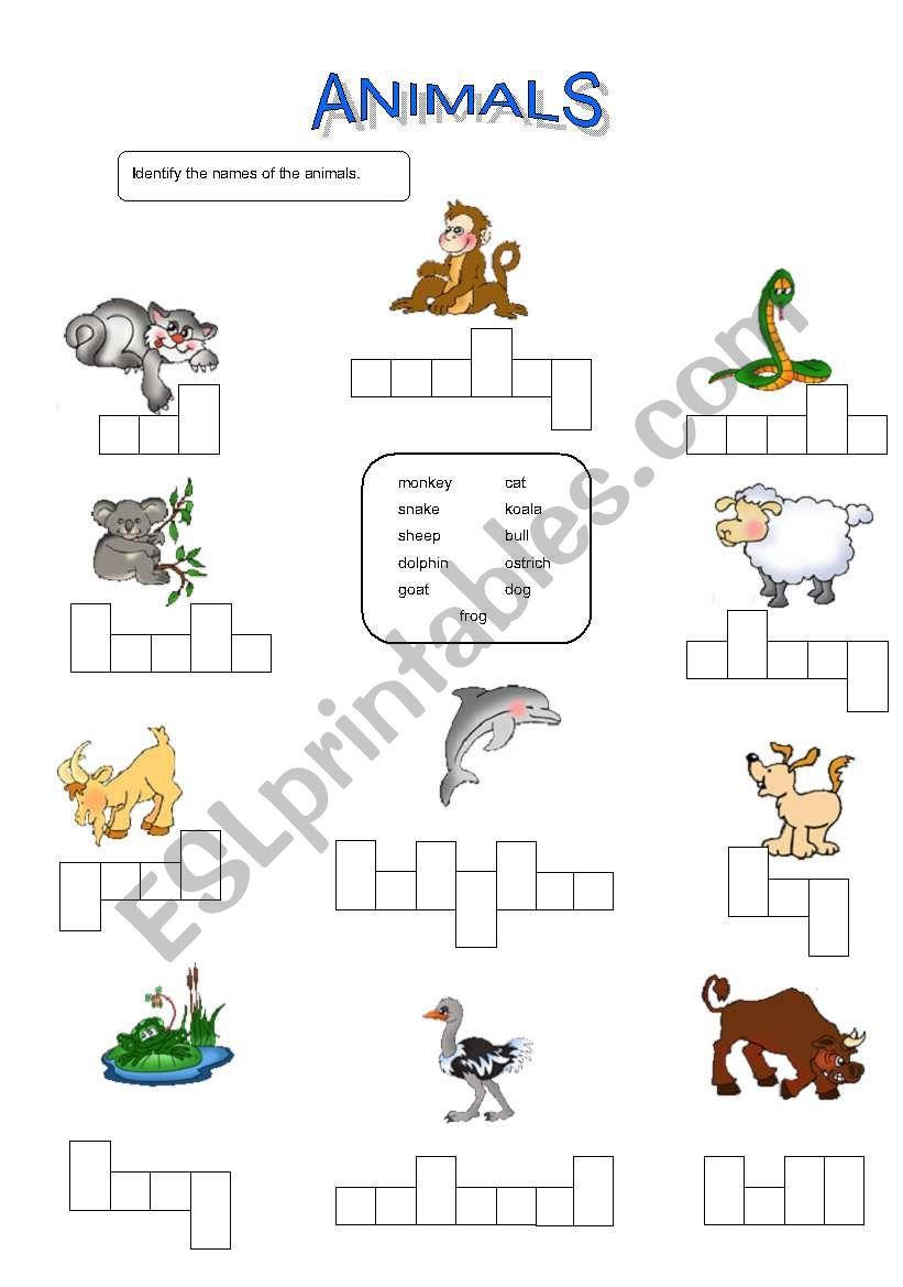animals identification esl worksheet by usedatwork. Black Bedroom Furniture Sets. Home Design Ideas
