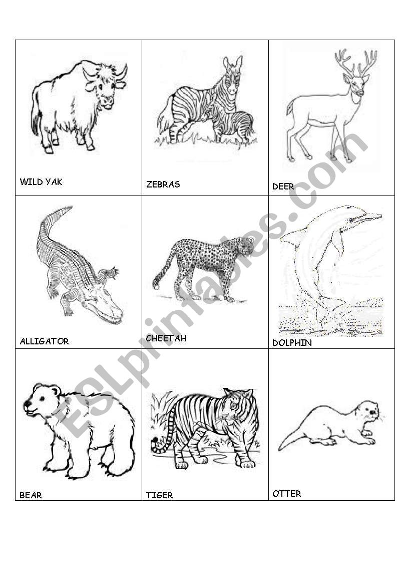 animals in danger(2) worksheet