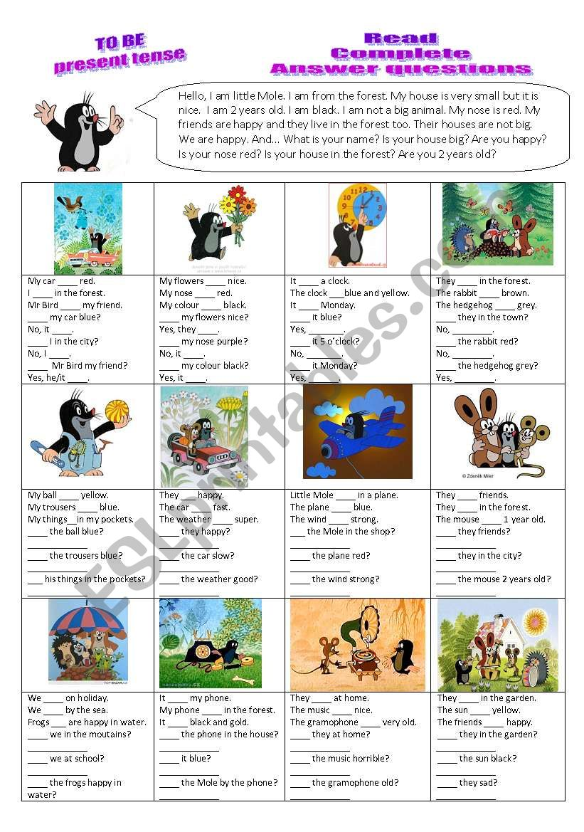 Verb TO BE - read, complete, answer questions