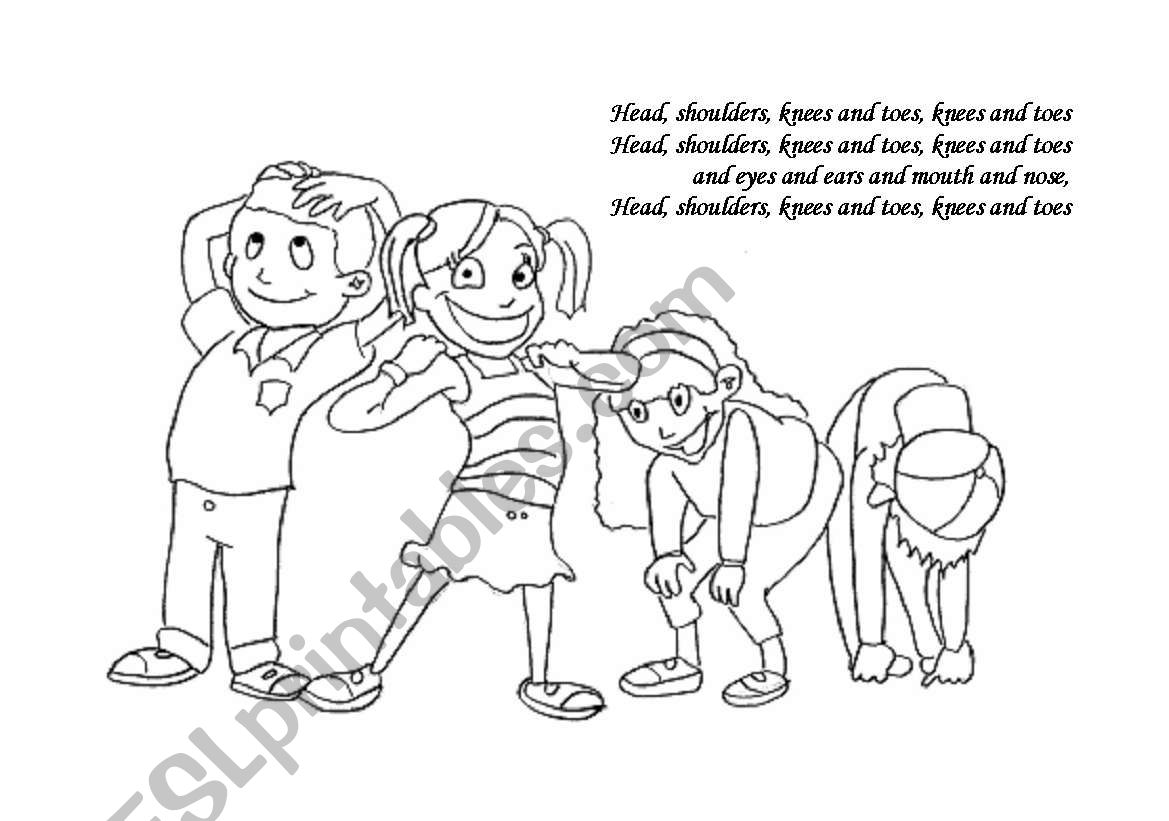 Head shoulders knees and toes worksheet