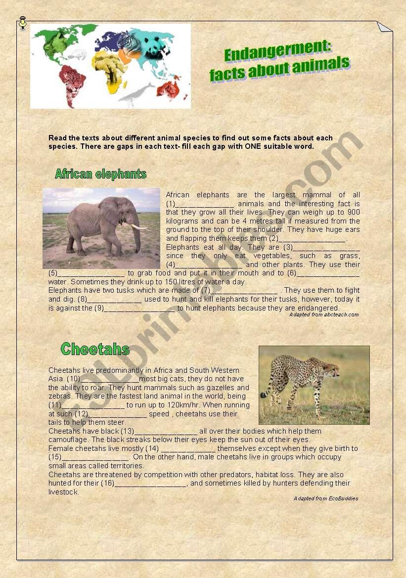 Endangerment: facts about animals