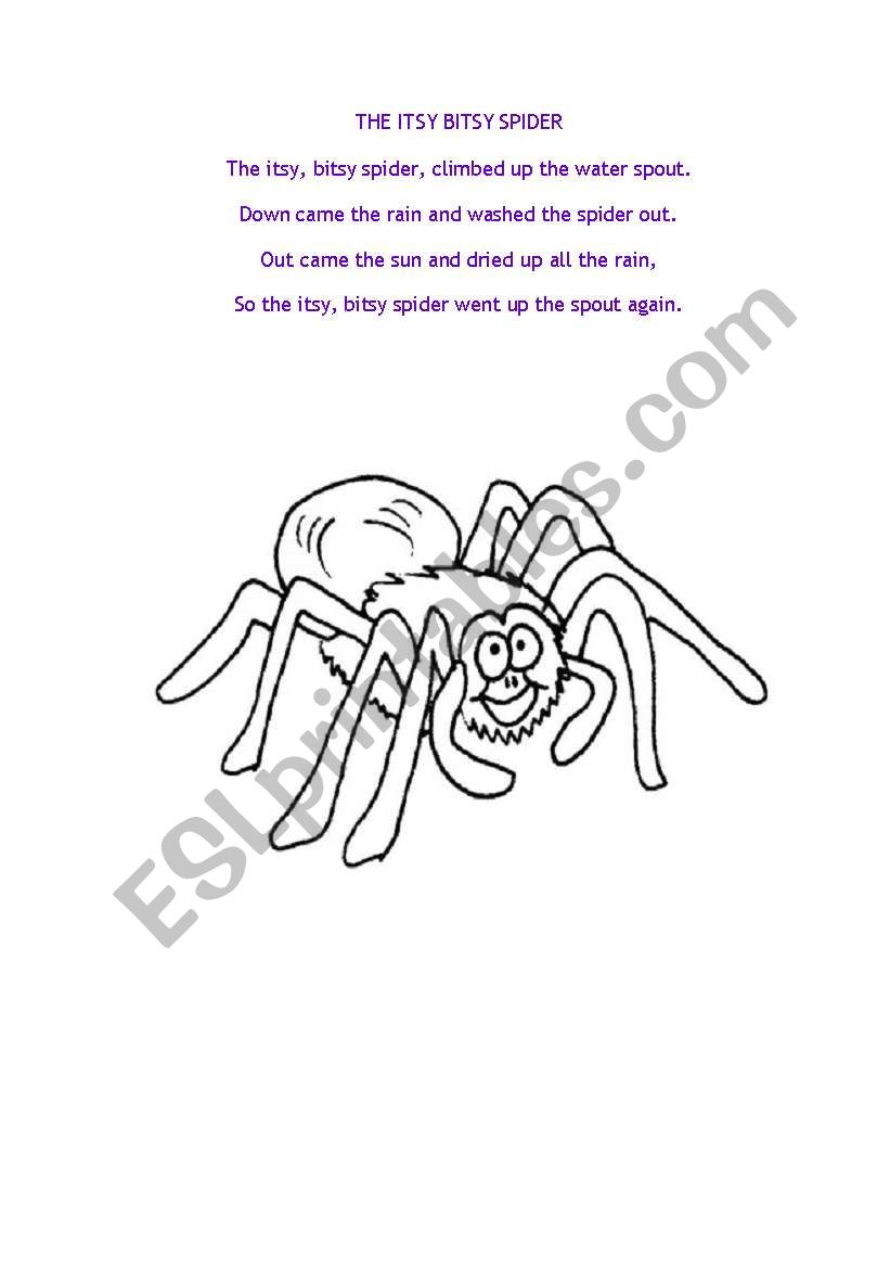The Itsy Bitsy Spider Song worksheet