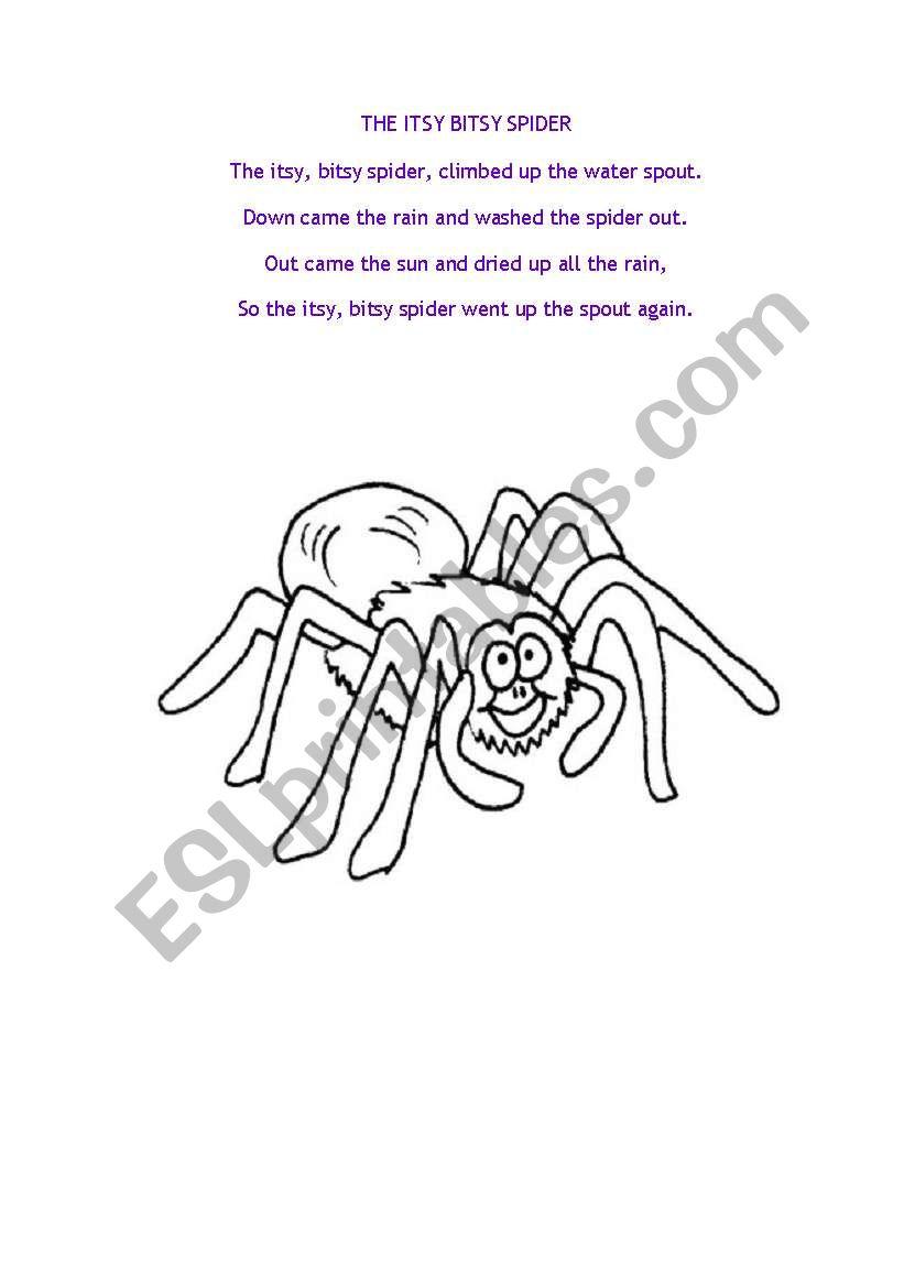 photograph regarding Itsy Bitsy Spider Printable called The Itsy Bitsy Spider Music - ESL worksheet via carolinekmurray