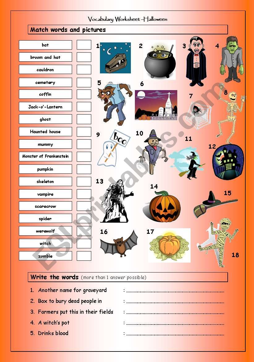 Vocabulary Matching Worksheet: Halloween
