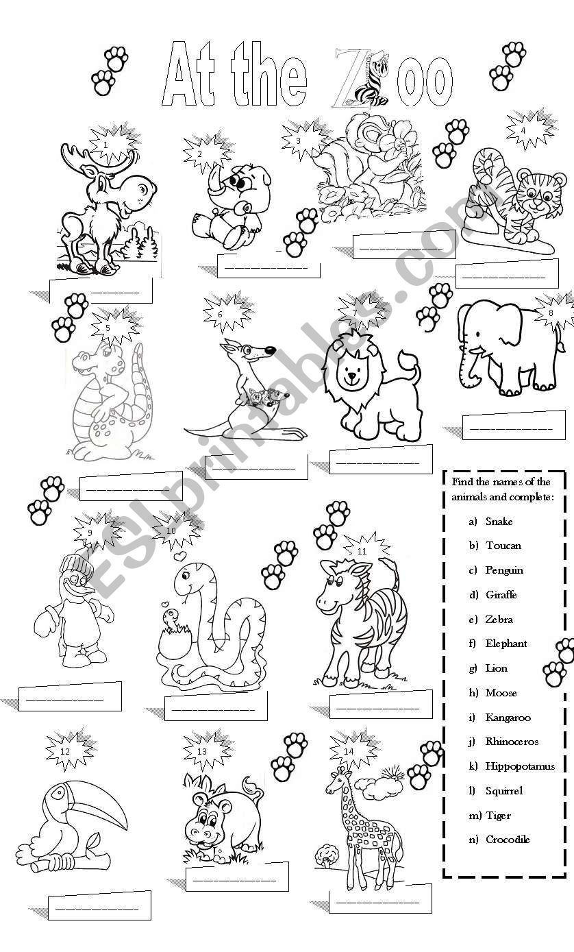 At The Zoo Esl Worksheet By Claudiafer