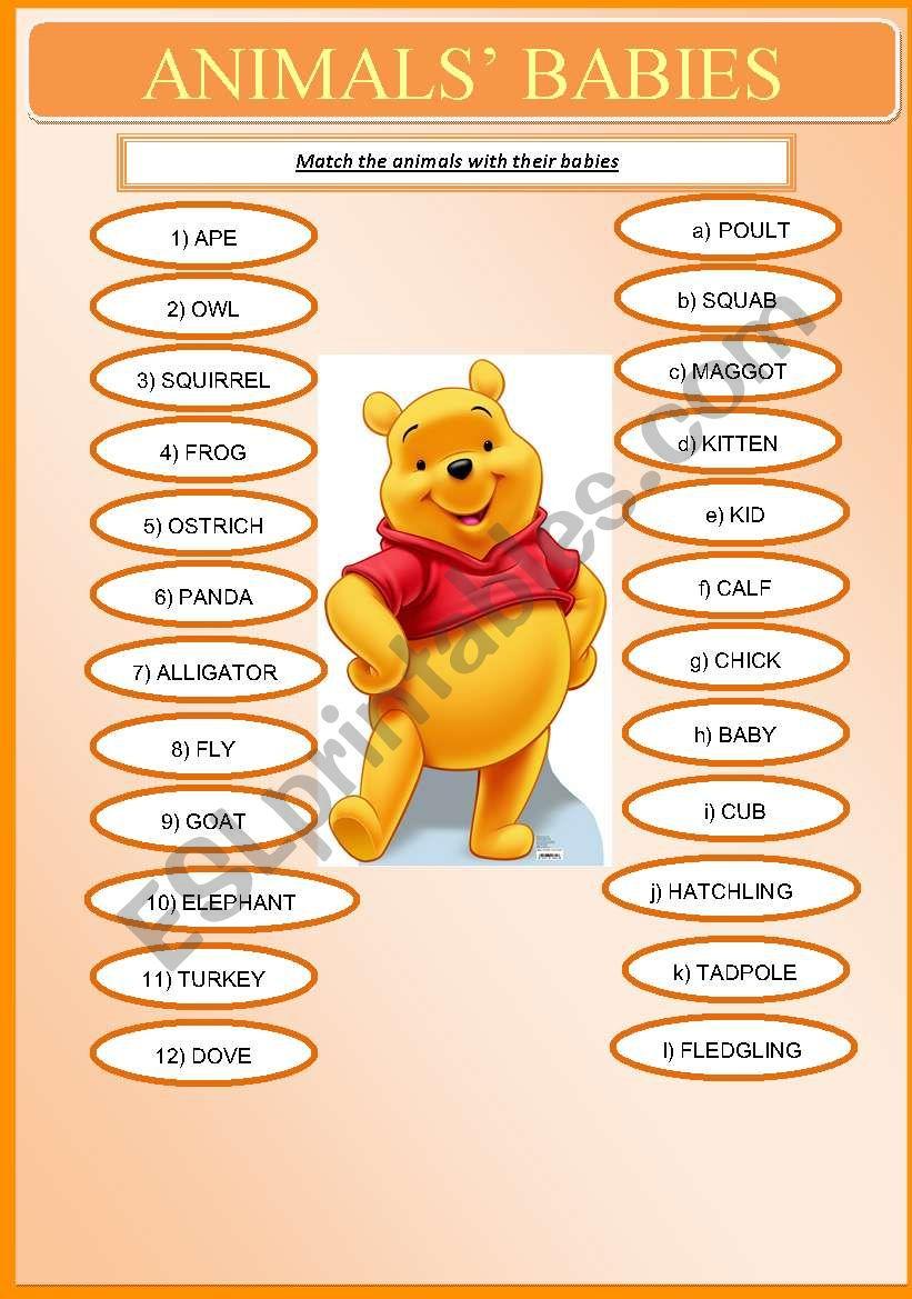 Animals´ Babies worksheet