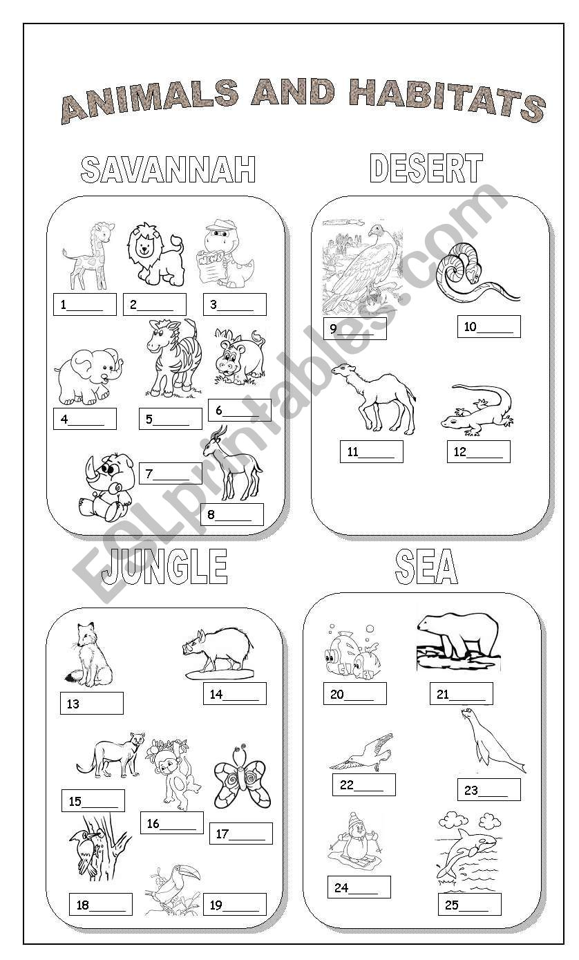 Animals And Habitats Esl Worksheet By Claudiafer