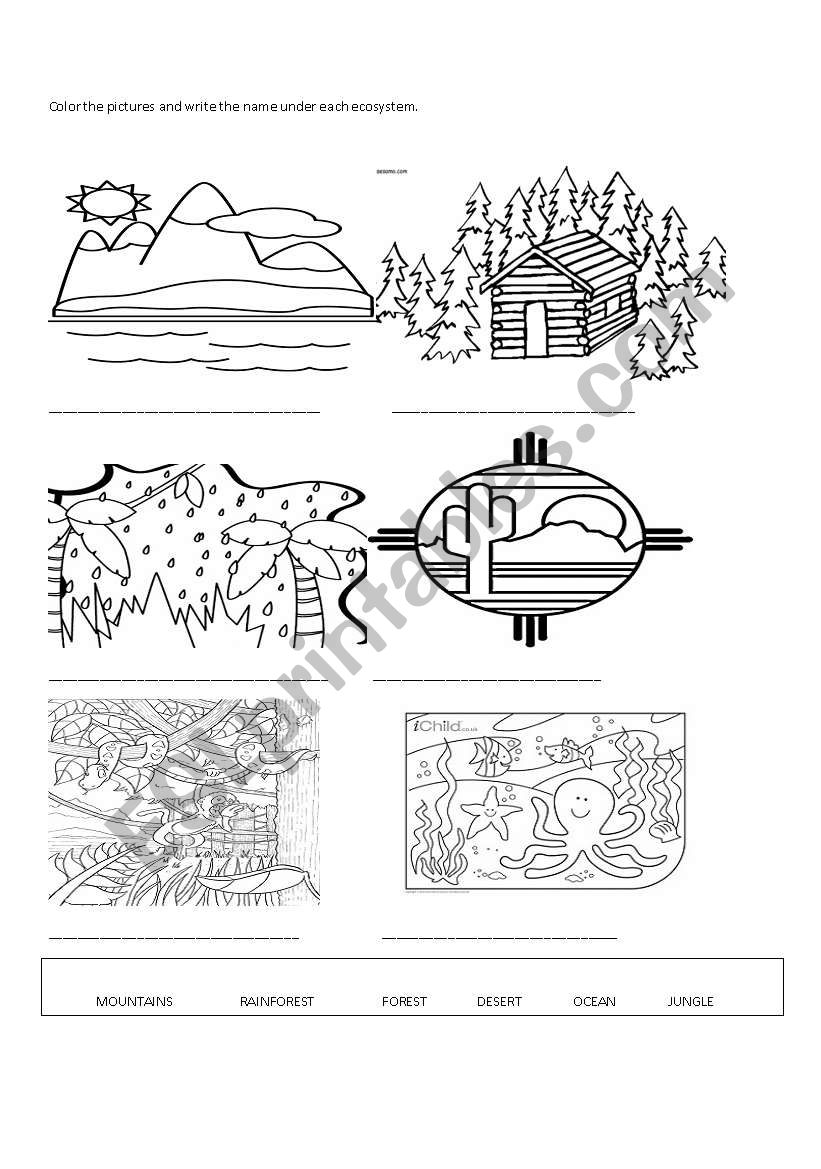 Ecosystems Esl Worksheet By Pamebect