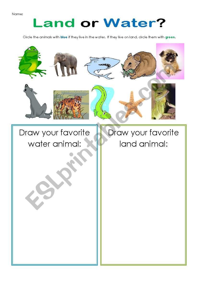 Land Or Water Esl Worksheet By Eveteacher