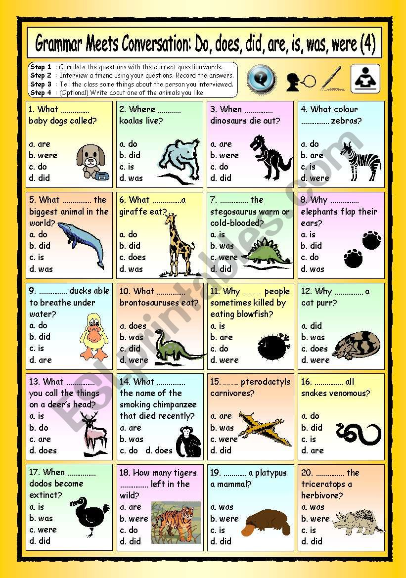 Grammar Meets Conversation: Do, does, did, are, is, was, were (4) - The Animal World