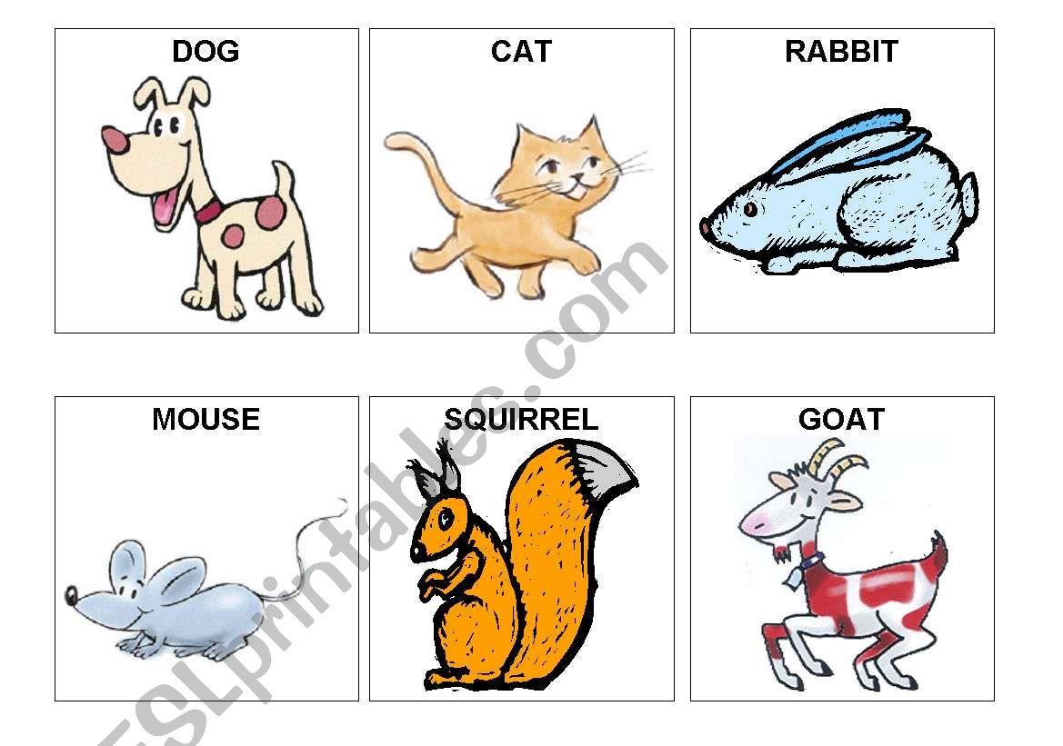 animal flashcards worksheet