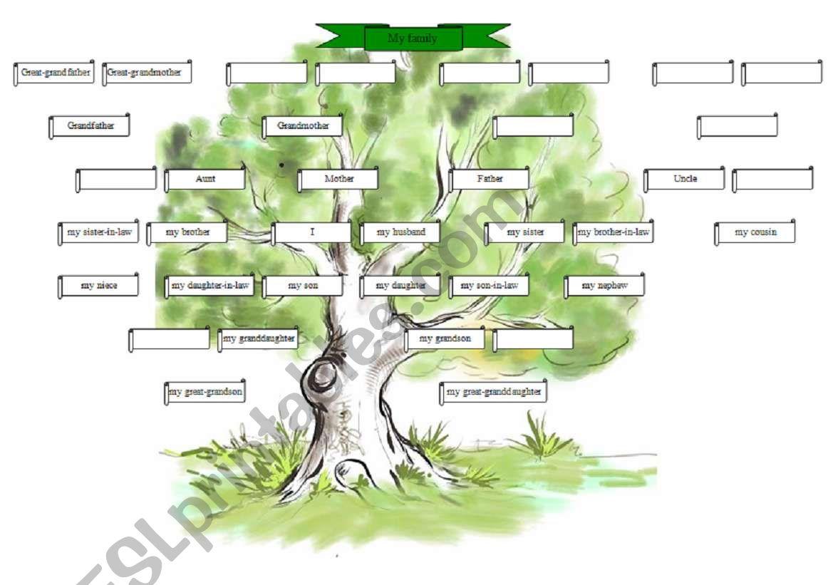 The family tree worksheet